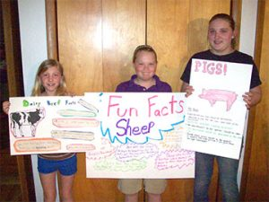 Laura Henderson, Casmira Keller and Stefani Strouse exhibit their posters for the up coming Bear Creak Festival on May 17 held at the Schuylkill County Fairgrounds. 4-H'ers are members of the Blue Mt. 4-H Livestock Club.