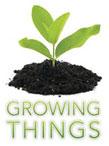 growing-things