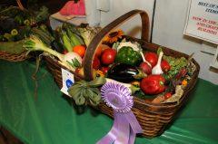 veggie-basket_4595