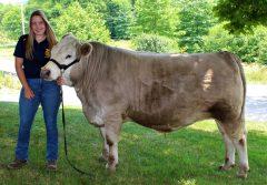 Kallie-Wolfe-with-steer